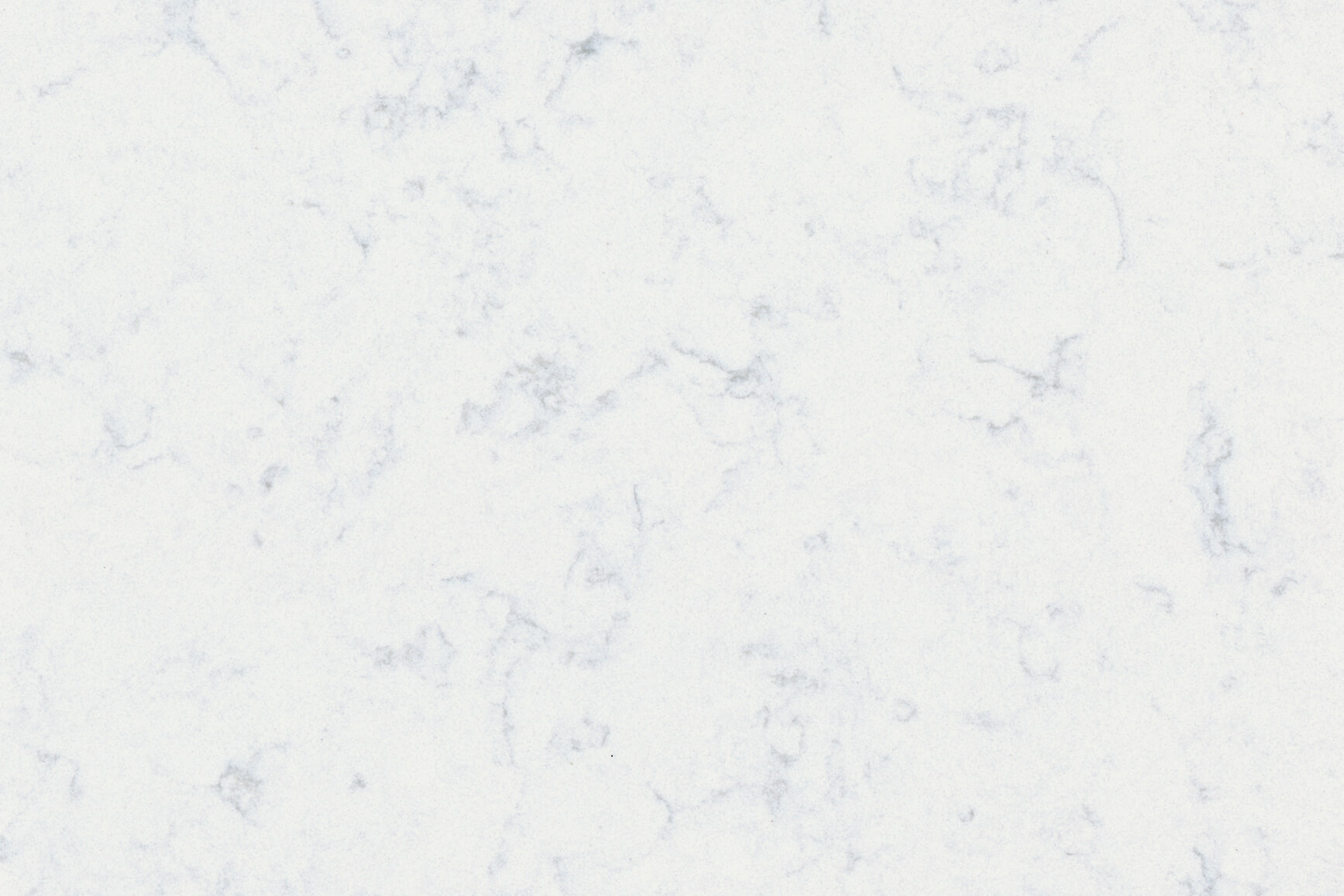 Noble-Carrara-new